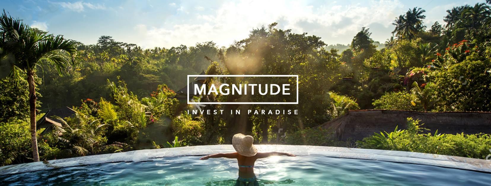 Magnitude Image